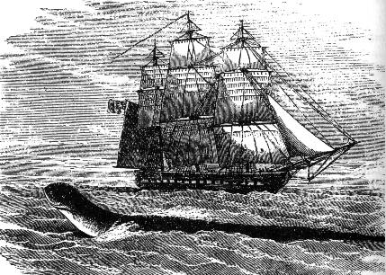 HMS Daedalus and the serpent