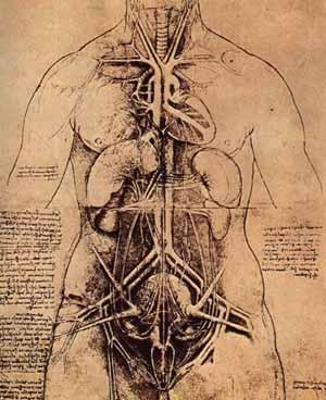 The UnMuseum - Leonardo\'s Sketch Books