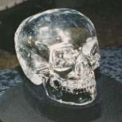 skull_hedges2.jpg